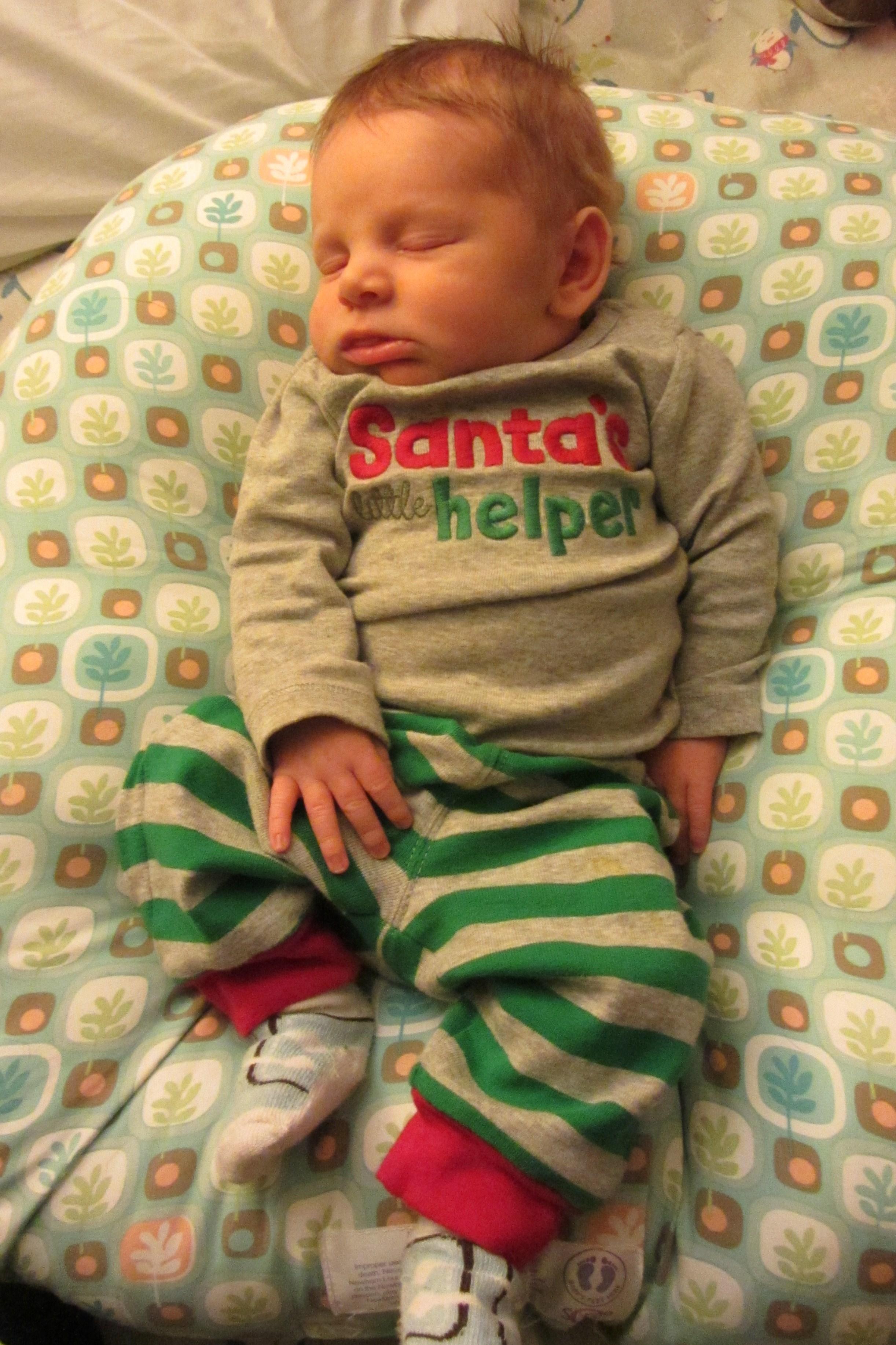 Damien S First Christmas Baby Birdet