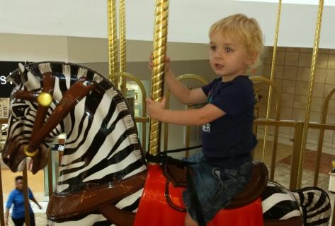 Ride the zebra!